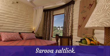 Diani-travel-center-Sarova-saltlick