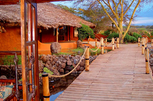 diani-travel-center-amboseli