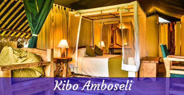 kibo-Amboseli-diani-travel-center-6-days-big-five-safari-2017