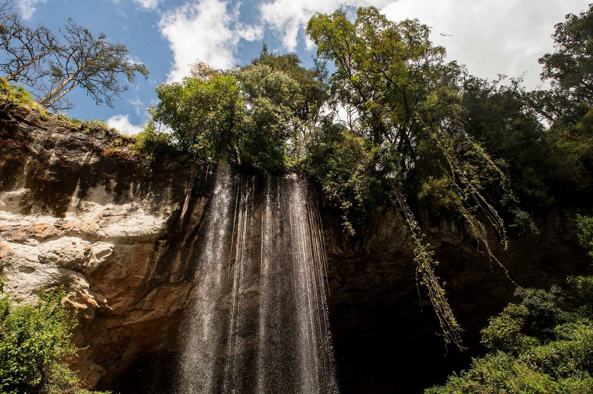 Diani_travel_center_National_Parks_in_Kenya_Mount_Elgon_National_park_image_3jpg