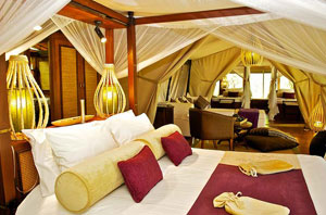Diani_travel_center_diani_tours_and_safaris_3_Days_masai_mara_by_air_diani_masai_mara-air