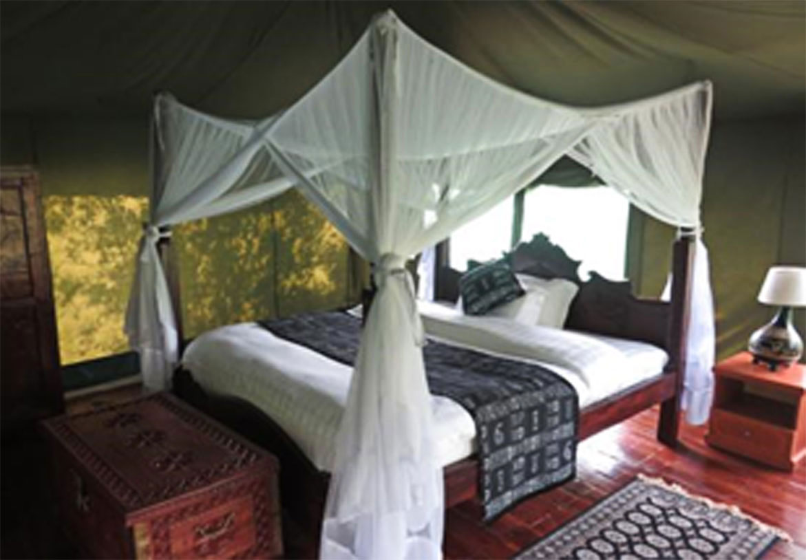 Diani_travel_center_diani_tours_and_safaris_3_Days_masai_mara_by_air_diani_masai_mara-air_